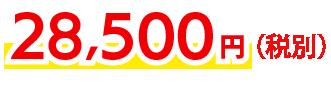 28,500円〜(税別)